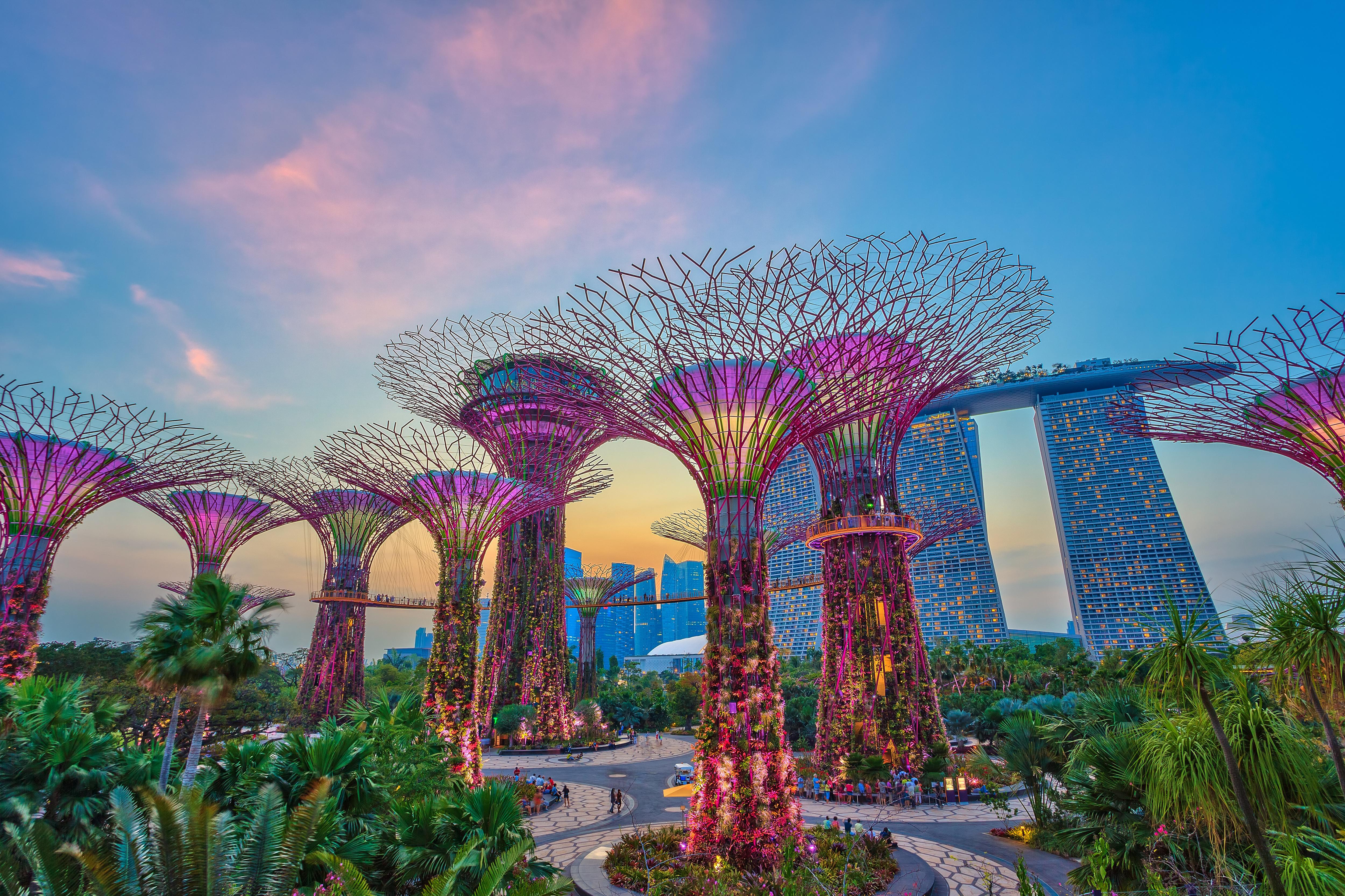 Umzug Nach Singapur Otc Global Kostenlose Und Individuelle Beratung